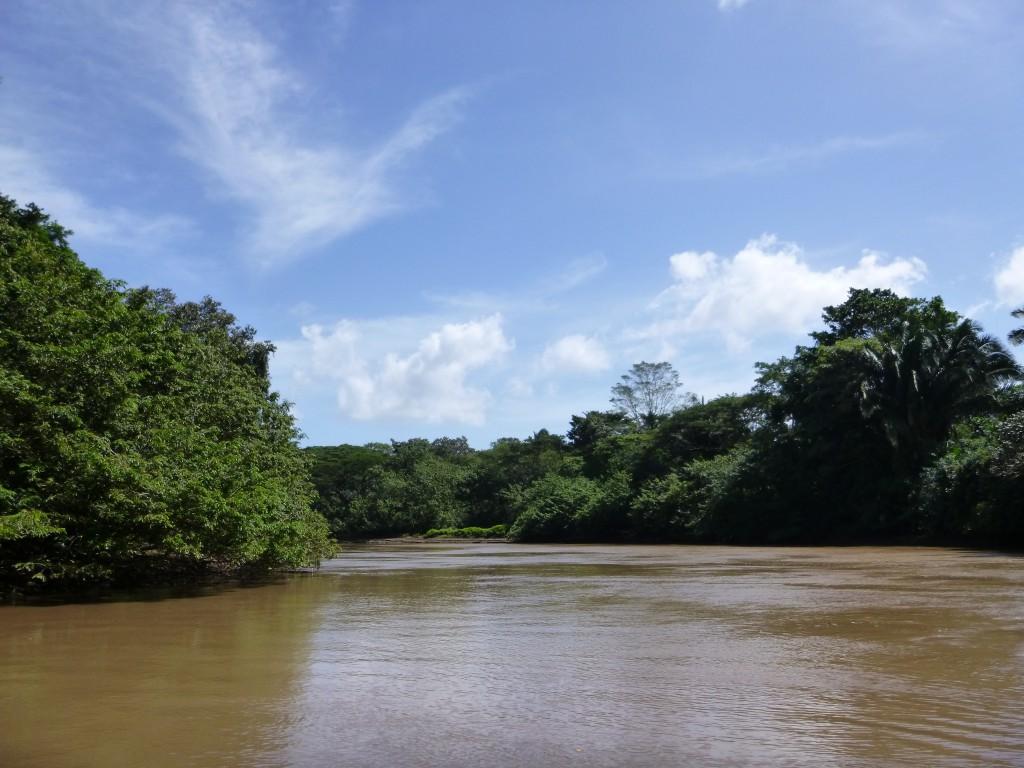 Costa Rica - Cano Negro Wildlife Refuge
