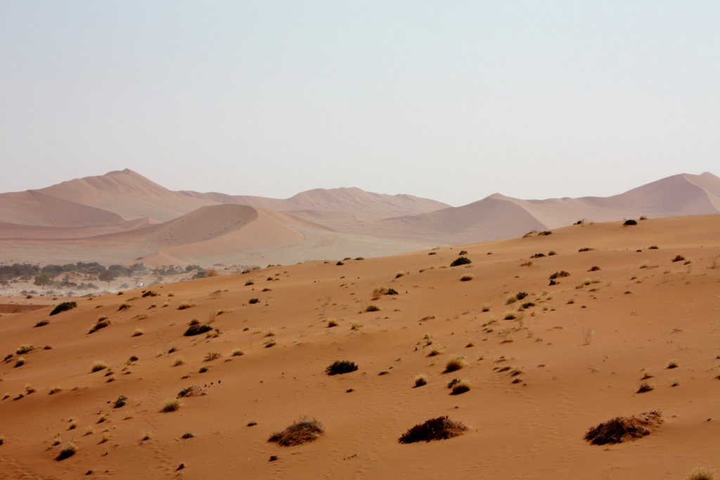 Namibia - Dead Vlei