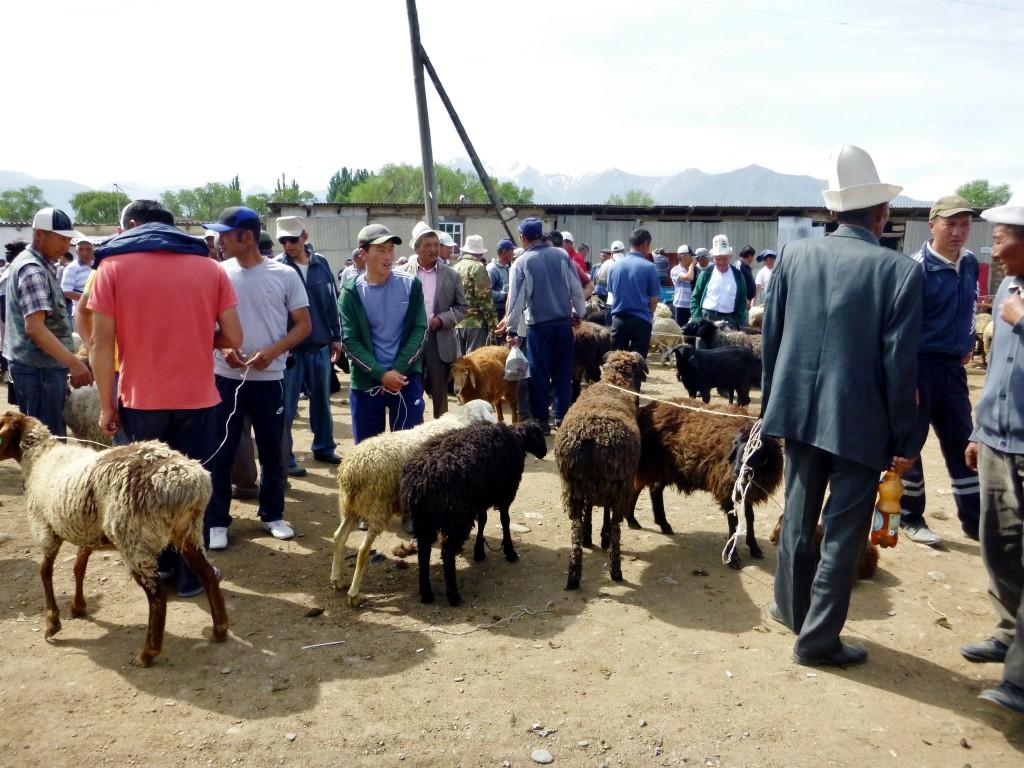 Kirgisistan - Kochkor