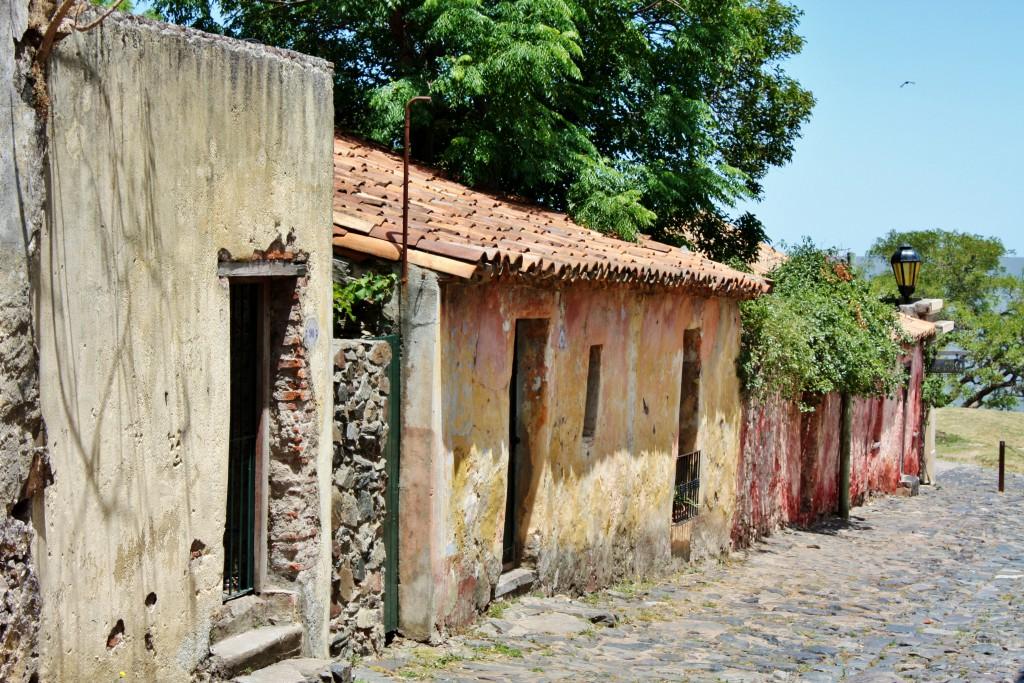 uruguay-brasil-argentina-og-paraguay-2008-2009-58-kopi