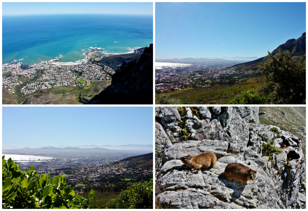 collage-table-mountain-1