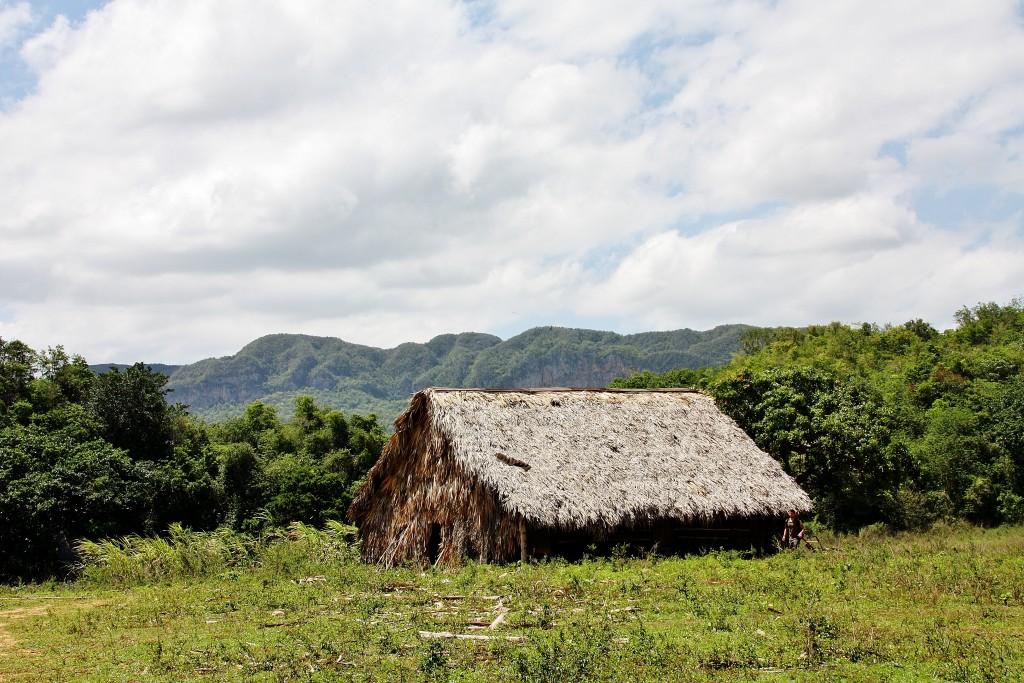IMG_5946 – Kopi - Vinales - Cuba