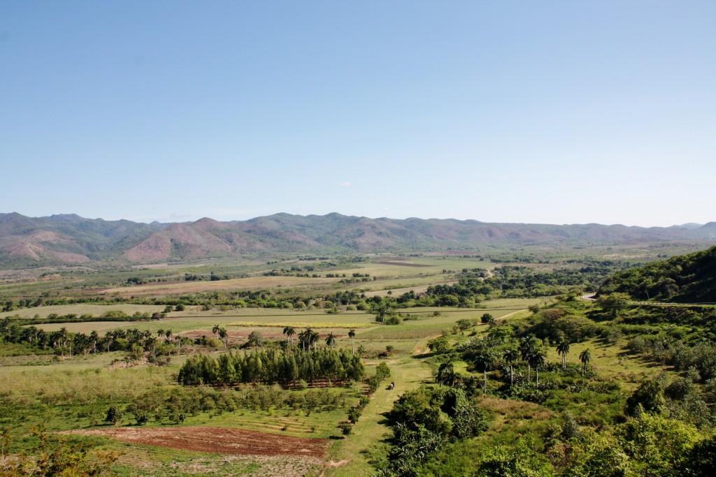 IMG_6961 – Kopi - Valle de los Ingenios - Trinidad - Cuba