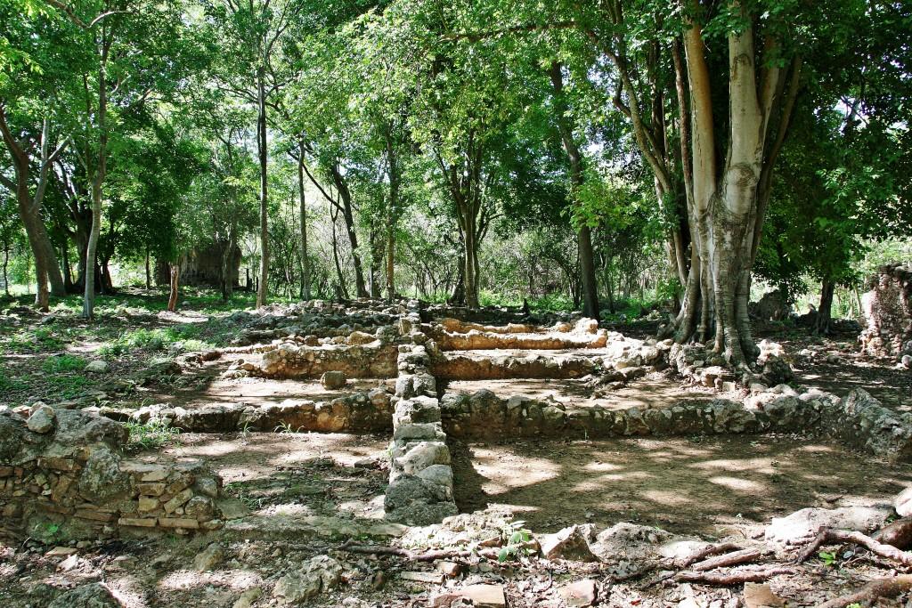 IMG_7100 – Kopi - Valle de los Ingenios - Trinidad - Cuba