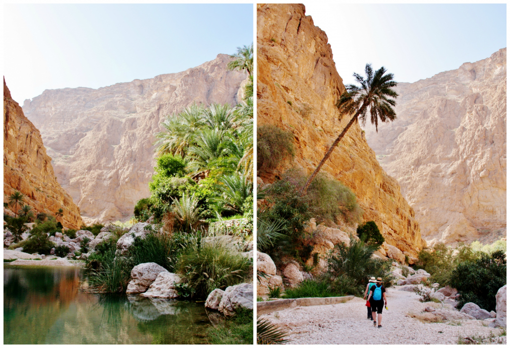 Collage Wadi Shab 3