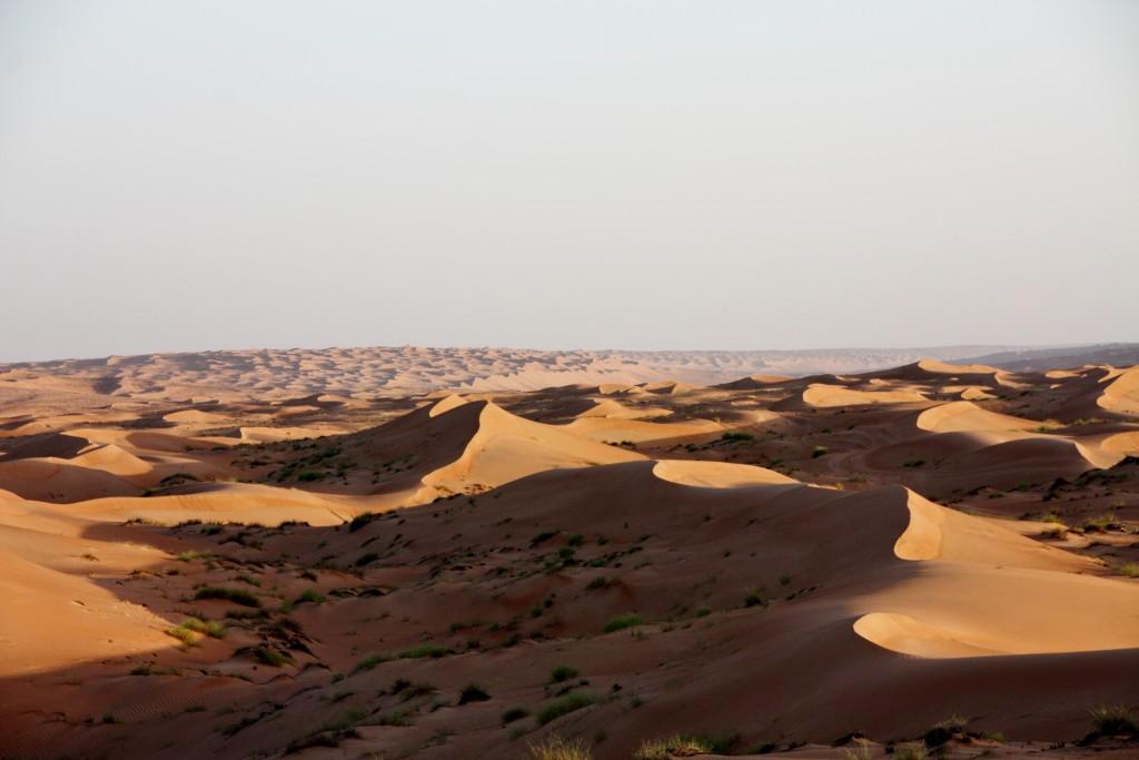 Oman - Wahiba Sands - IMG_1194 – Kopi