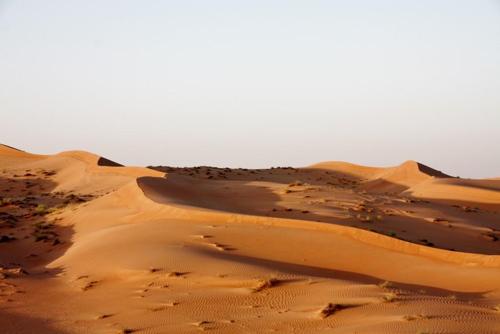Oman - Wahiba Sands - IMG_1206 – Kopi