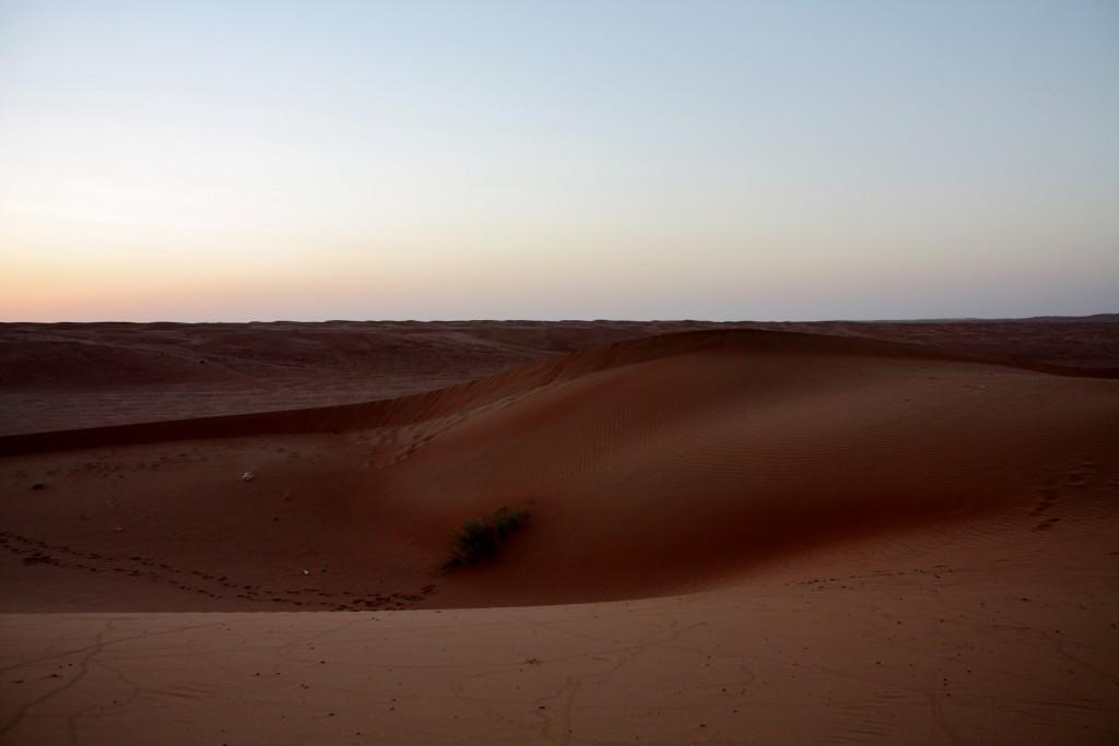 Oman - Wahiba Sands - IMG_1279 – Kopi