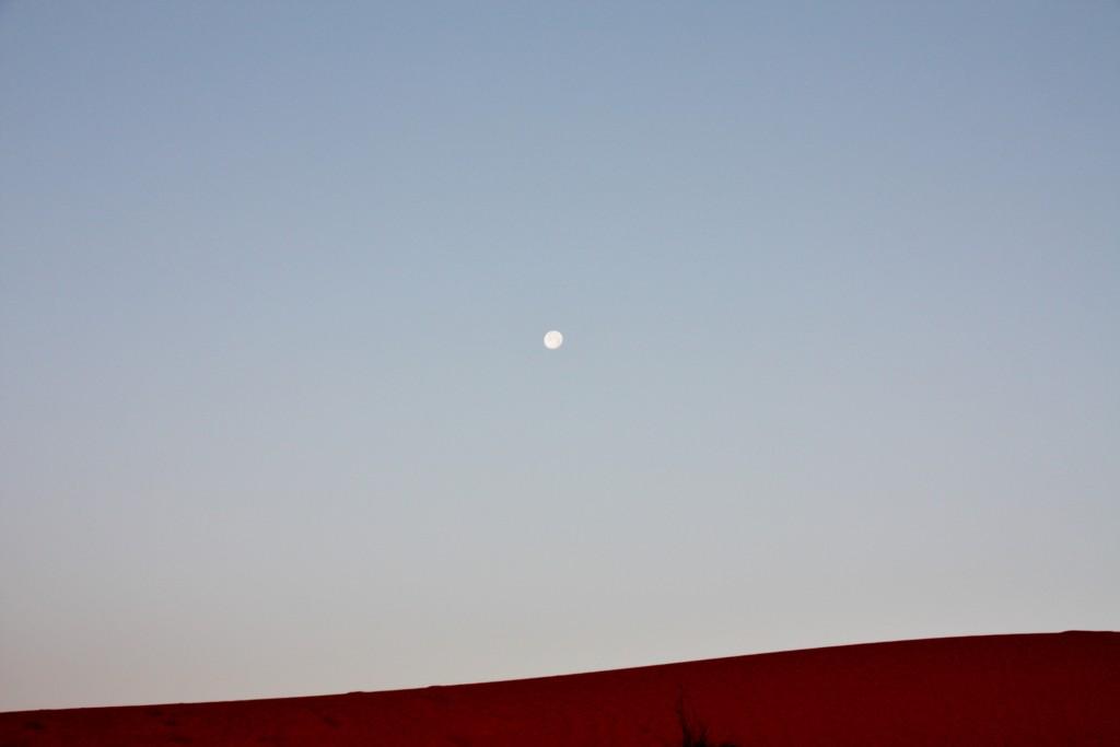 Oman - Wahiba Sands - IMG_1324 – Kopi
