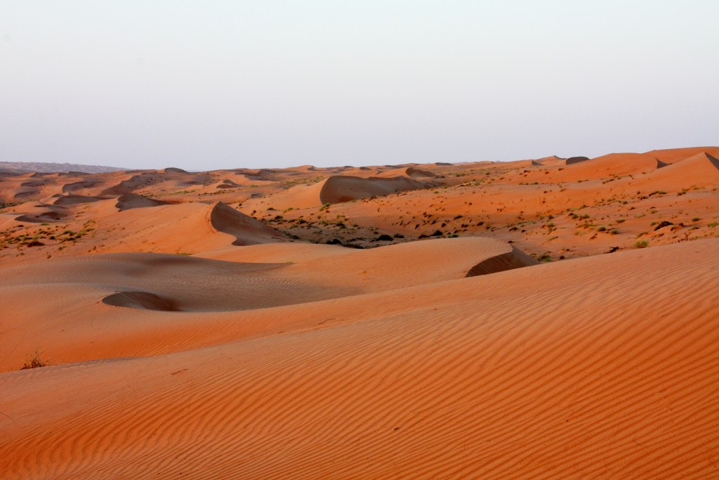 Oman - Wahiba Sands - IMG_1340 – Kopi