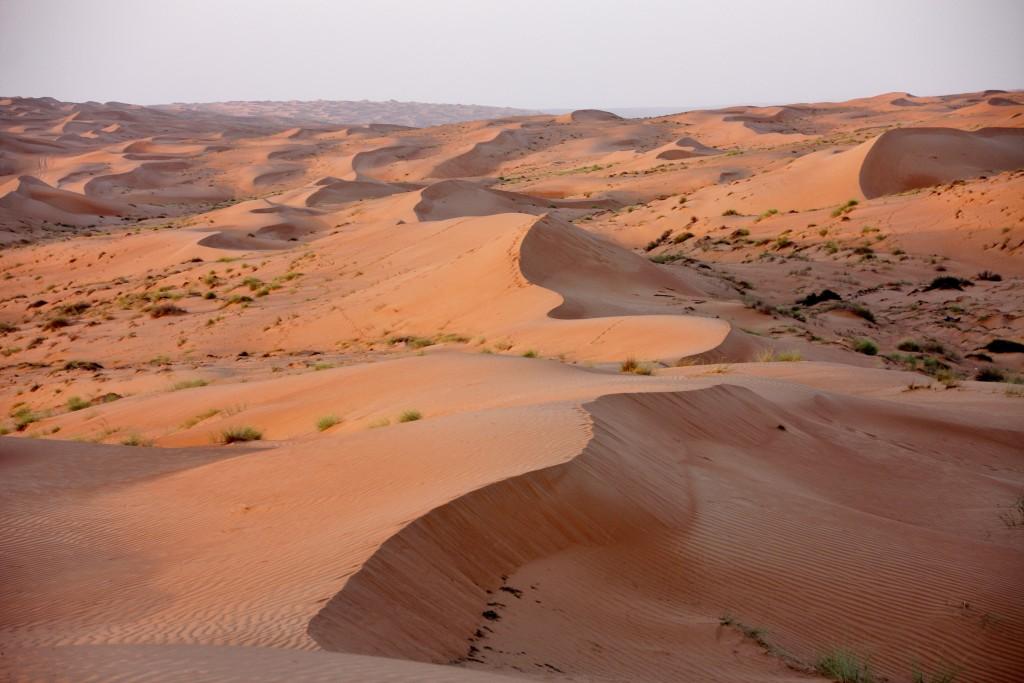 Oman - Wahiba Sands - IMG_1355 – Kopi