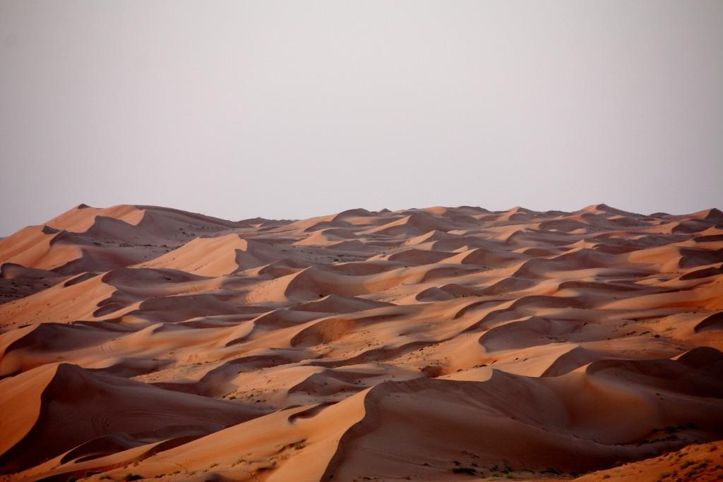 Oman - Wahiba Sands - IMG_1373 – Kopi