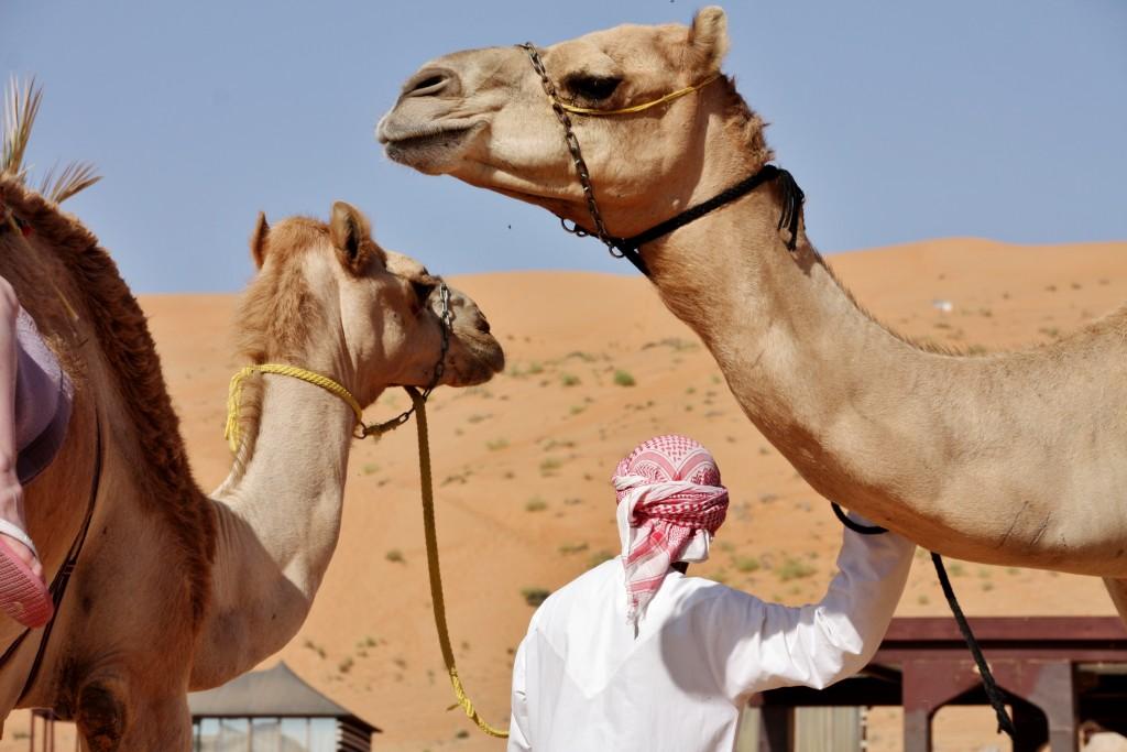 Oman - Wahiba Sands - IMG_1500 – Kopi