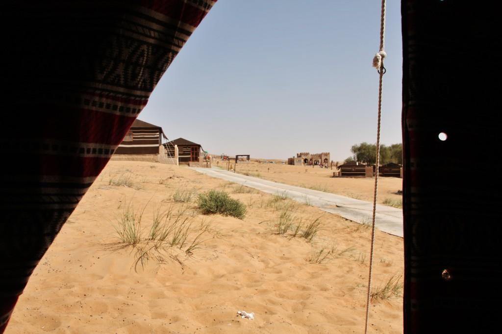 Oman - Wahiba Sands - IMG_1538 – Kopi