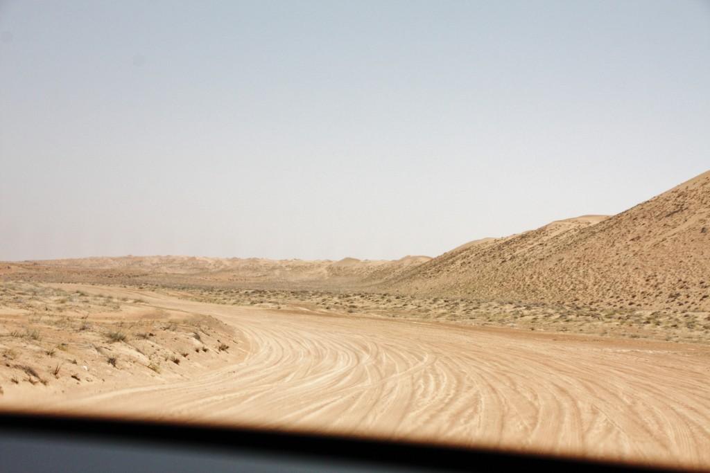 Oman - Wahiba Sands - IMG_1572 – Kopi