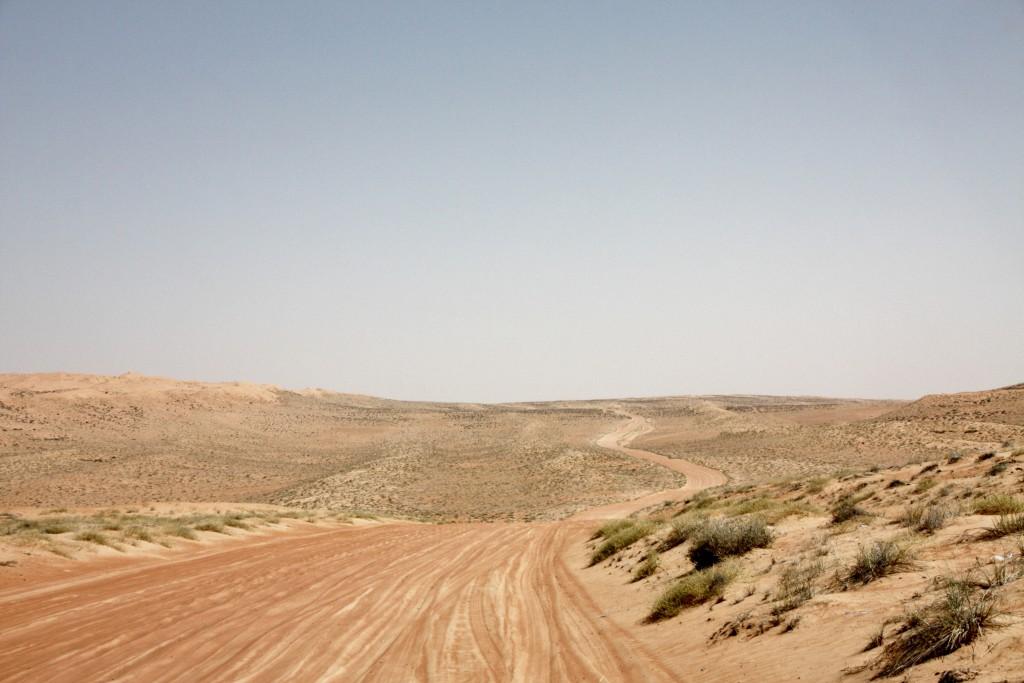 Oman - Wahiba Sands - IMG_1577 – Kopi