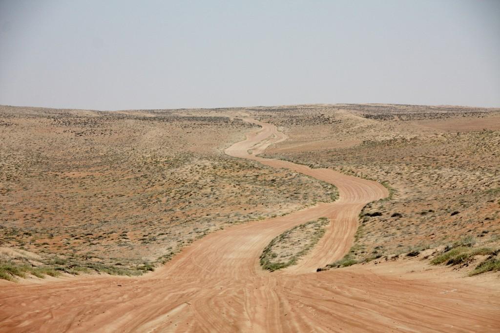 Oman - Wahiba Sands - IMG_1580 – Kopi