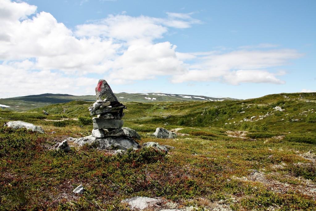 Norge - Hardangervidda - IMG_4388 – Kopi