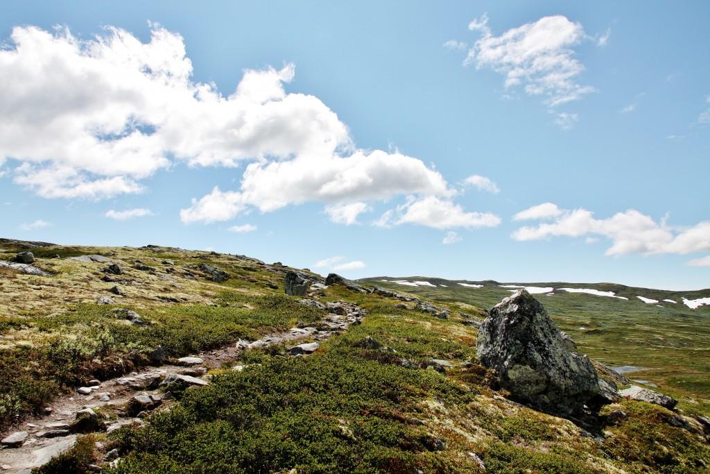 Norge - Hardangervidda - IMG_4526 – Kopi