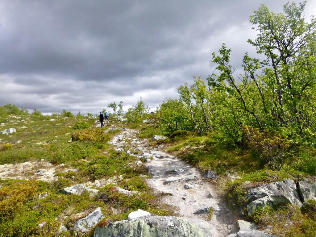 Norge - Hardangervidda - P1230905 – Kopi