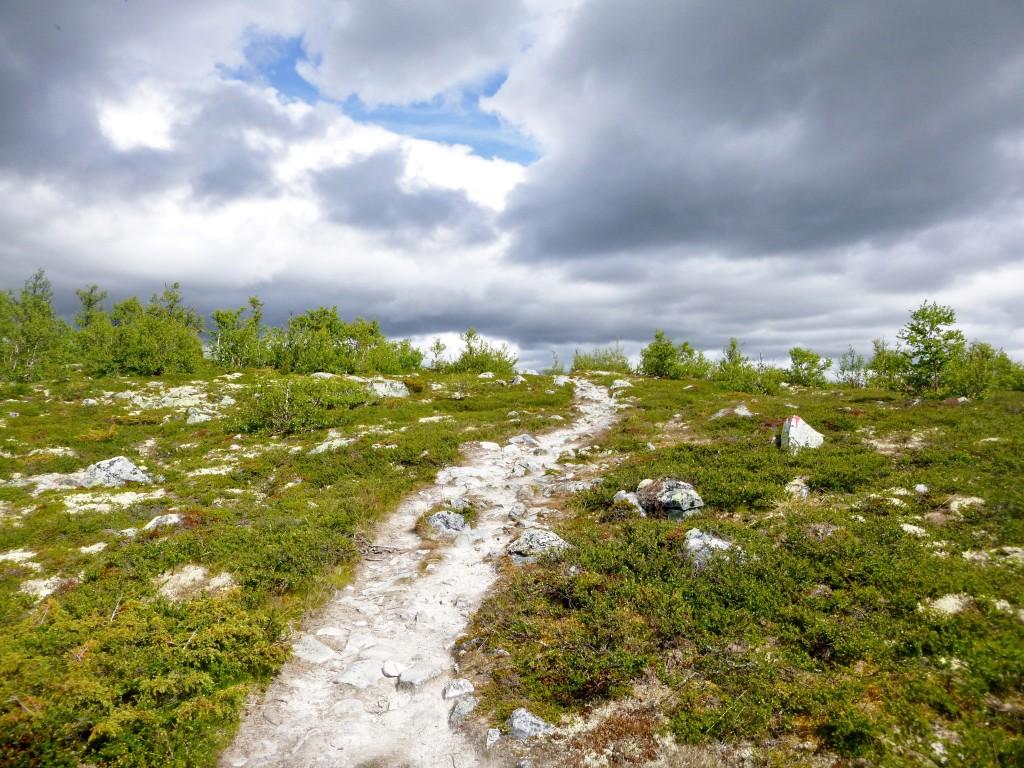Norge - Hardangervidda - P1230912 – Kopi
