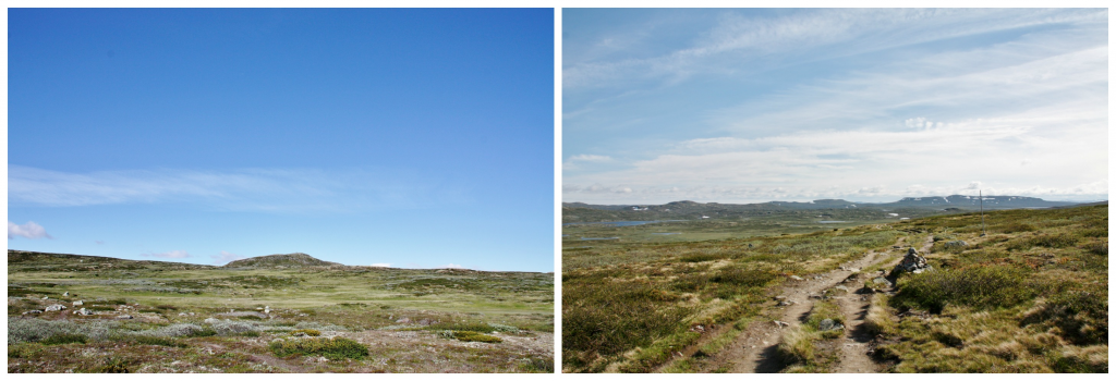 Collage Hardangervidda 1