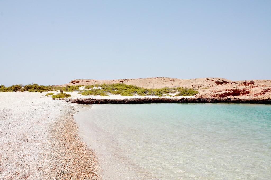 Oman - Muscat - Daymaniat - IMG_2954 – Kopi