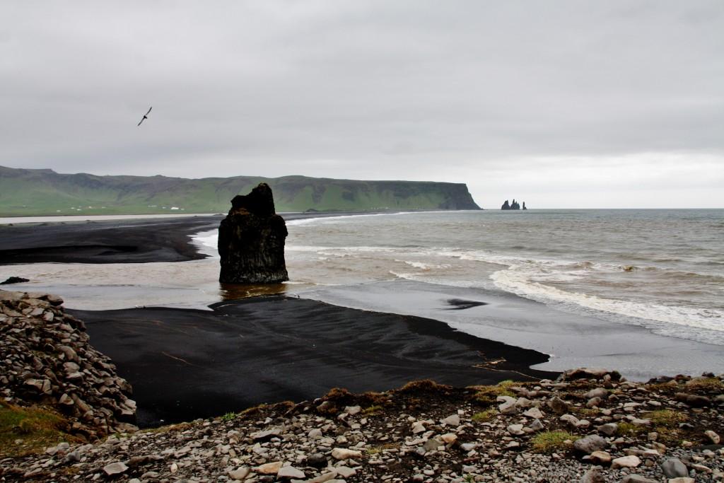 Island - Dyrholaey - IMG_7912 – Kopi