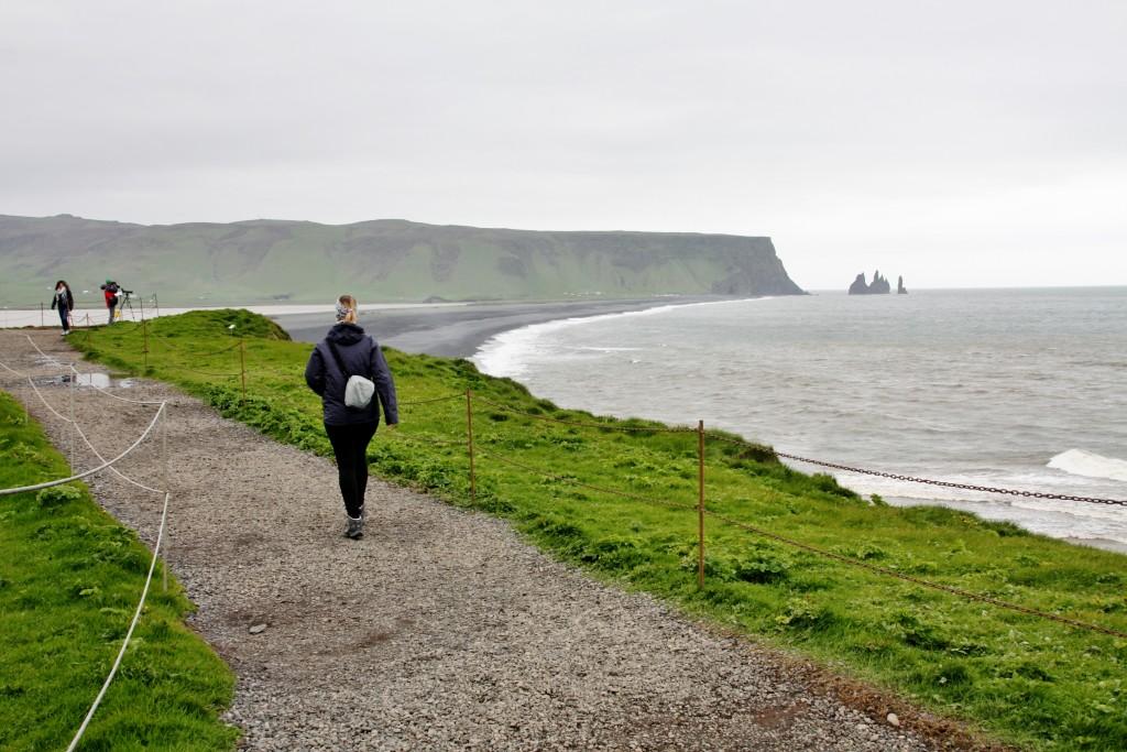 Island - Dyrholaey - IMG_7920 – Kopi