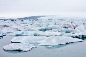 Island - Jökulsárlón - IMG_9383 - Kopi