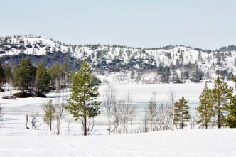 Norge - Resdalen - IMG_6425 – Kopi