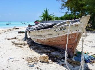 Tanzania - Zanzibar - Nungwi - (224) - Kopi