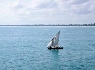 Tanzania - Dar es Salaam - Zanzibar - (346) - Kopi