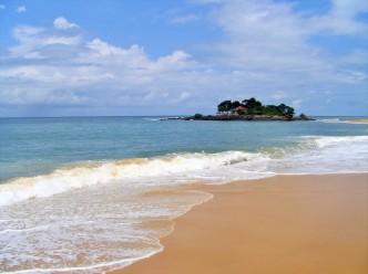 Sierra Leone - (442) - Kopi