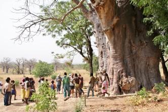 Togo - Koutammakou - IMG_8387 – Kopi