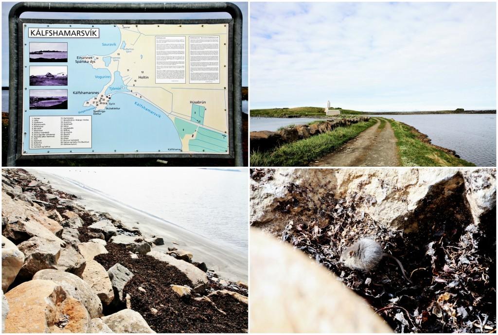 Island - Collage Kálfshamarsvík 1