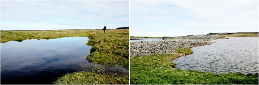 Island - Collage Kálfshamarsvík 10