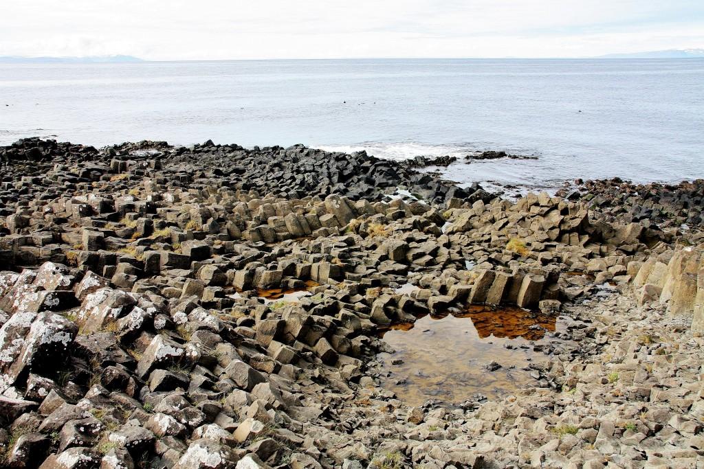 Island - Kálfshamarsvík - IMG_0542 – Kopi