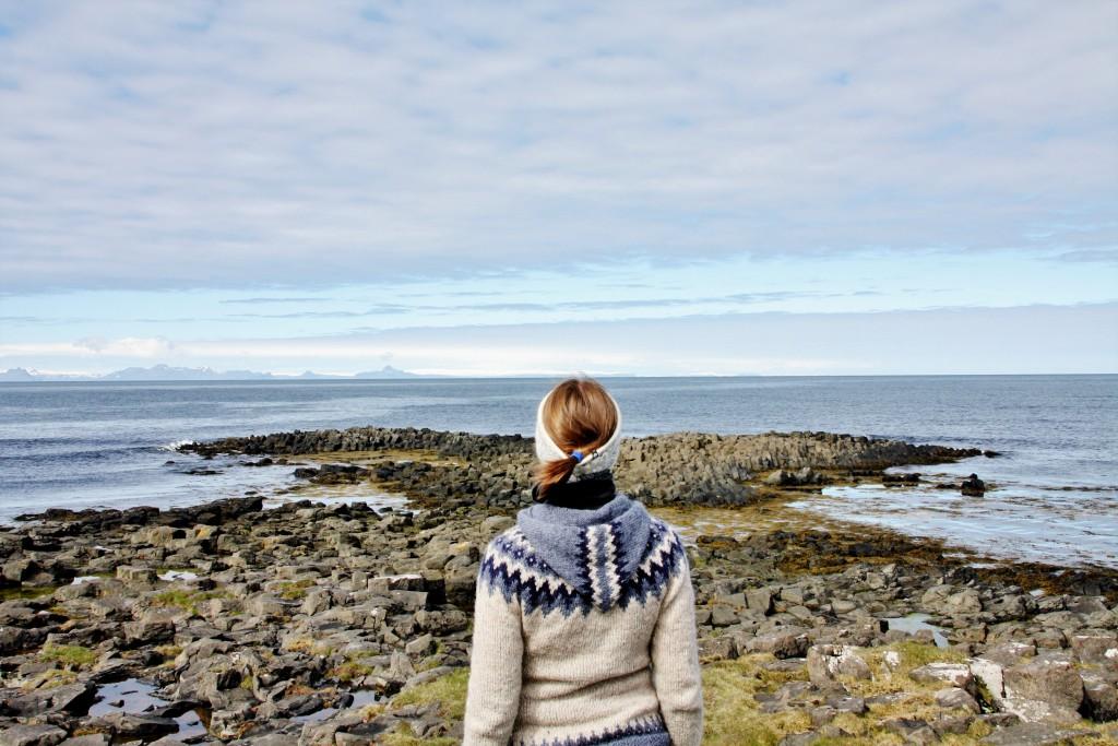 Island - Kálfshamarsvík - IMG_0672 – Kopi