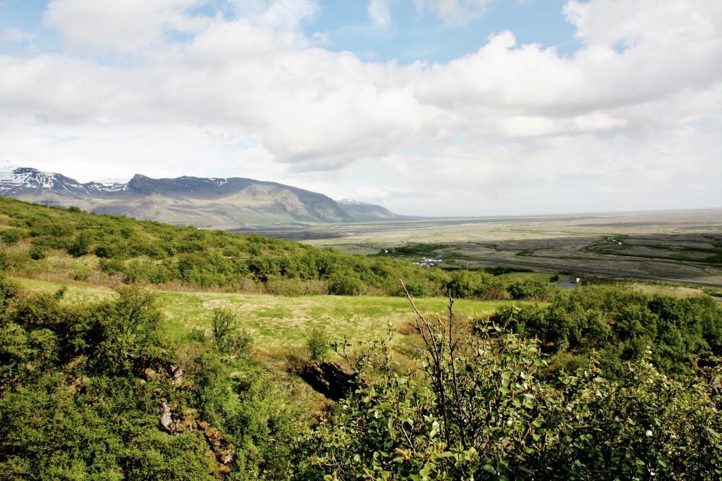 Island - Svartifoss - IMG_8286 – Kopi