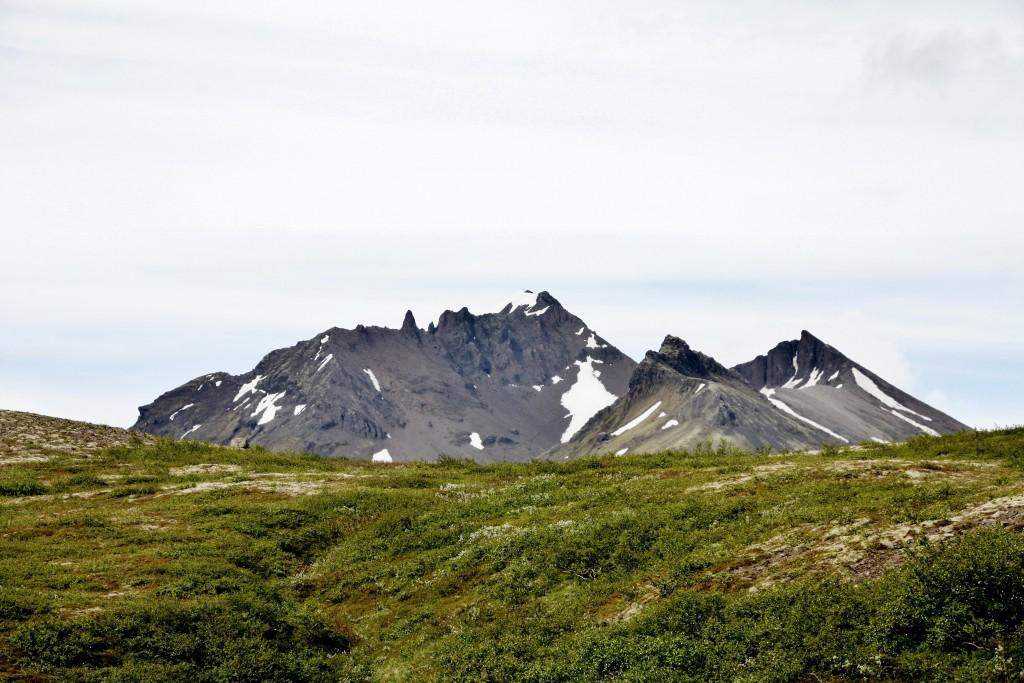 Island - Svartifoss - IMG_8307 – Kopi
