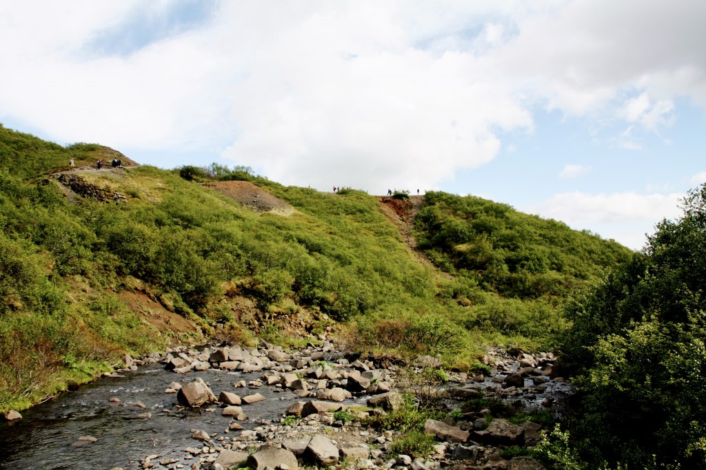 Island - Svartifoss - IMG_8331 – Kopi