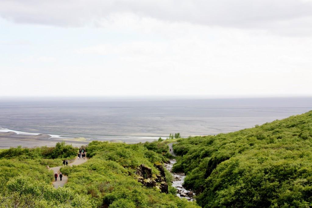 Island - Svartifoss - IMG_8394 – Kopi