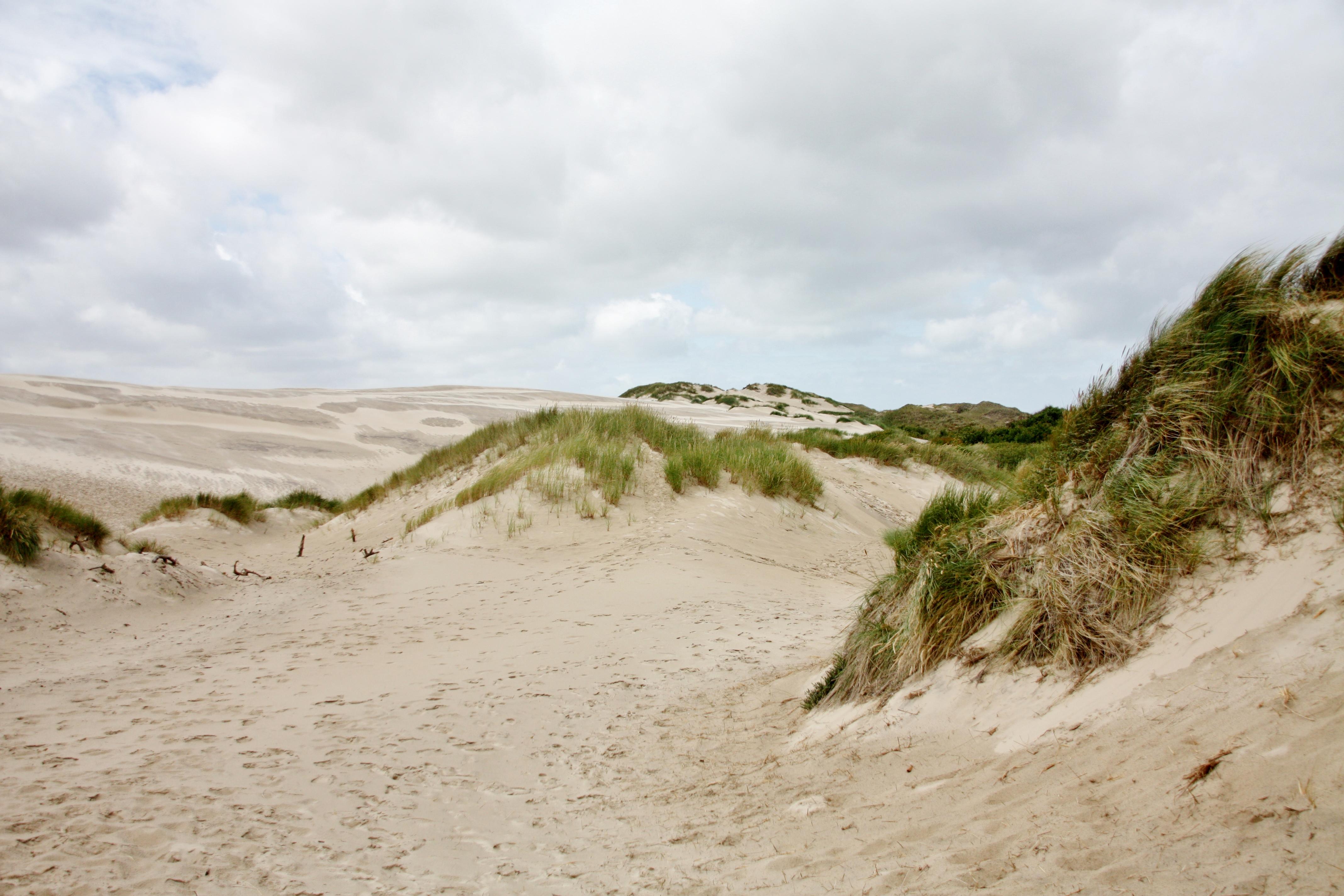 Skagen Sanddyner